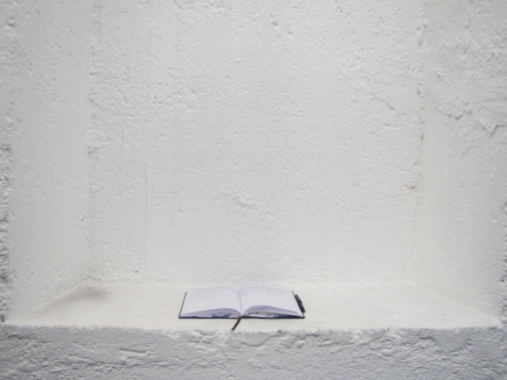 Cyano-Tagebuch 2015