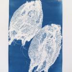 Cyanotypie 29 x 41 cm