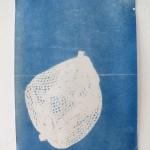 Cyanotypie 21 x 29 cm