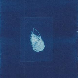 Cyanotypie/ Radierung